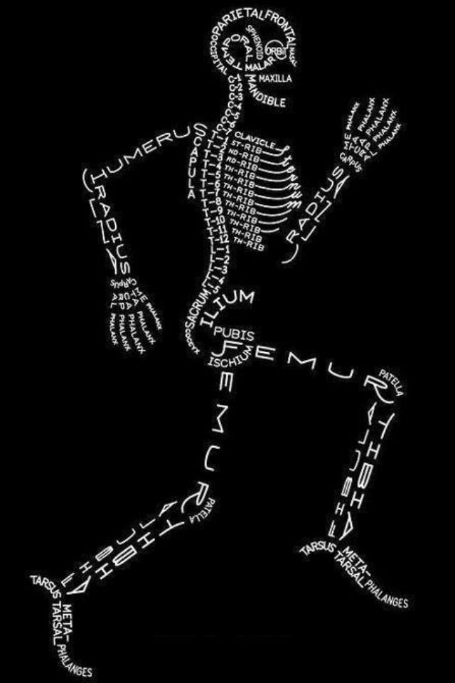 Bones....Repinned by PT Solutions, follow us at http://www.pinterest.com/myptsolutions/