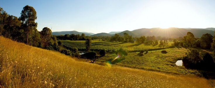 5 tasty reasons to visit the King Valley