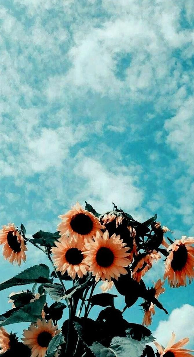 Aesthetic Wallpaper In 2020 Blue Sky Wallpaper Blue Sky Photography Dark Blue Wallpaper