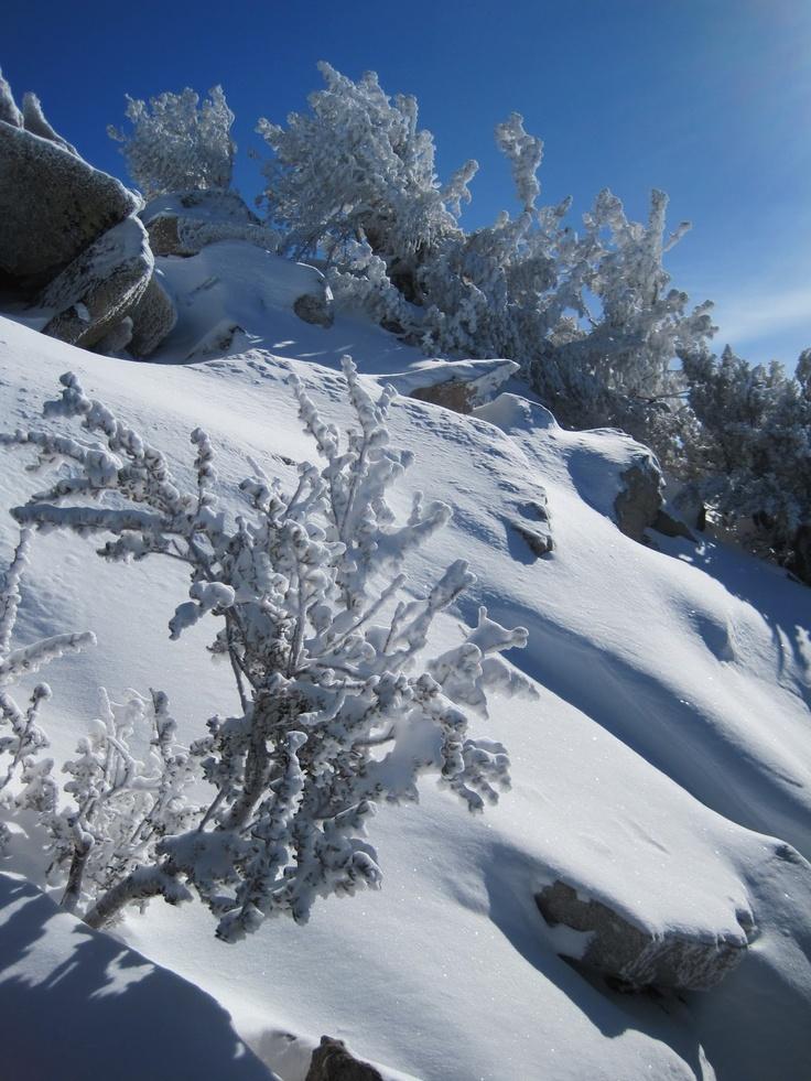 Lake Tahoe Winter Wallpaper Desktop Background: 1000+ Ideas About Heavenly Ski Resort On Pinterest