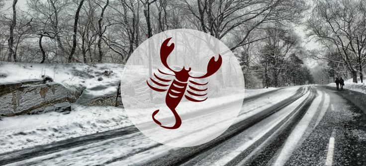 Hidden meanings and a lot of mystery this holiday season … http://www.thehoroscope.co/horoscope-articles/scorpio-Scorpio-December-2016-Monthly-Horoscope-234.html