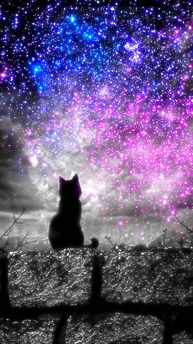Galaxy cat iphone background background ideas for Best home wallpaper iphone