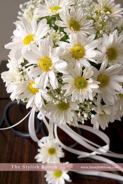 Daisy Boquet.  This is the boquet I want, but with blue baby's breath instead of white.