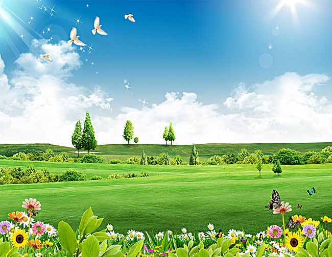Blue Sky Green Grass Background Green Background Video Beautiful Nature Wallpaper Hd Beautiful Images Nature