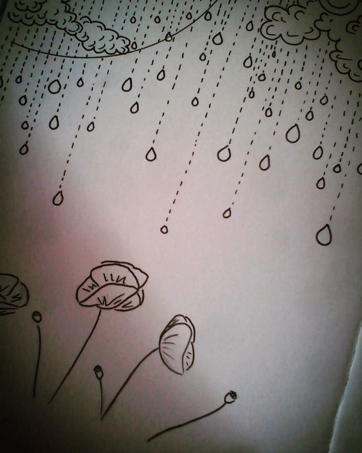 Poppies in the rain. Markerpen on paper. Black&white sketch. https://niume.com/post/213024