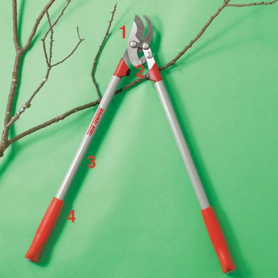thisoldhouse.com | TOH Tested: Pruning Tools