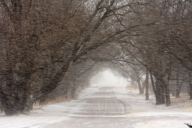7 Non-perishable Healthy Foods to Have on Hand During a Blizzard