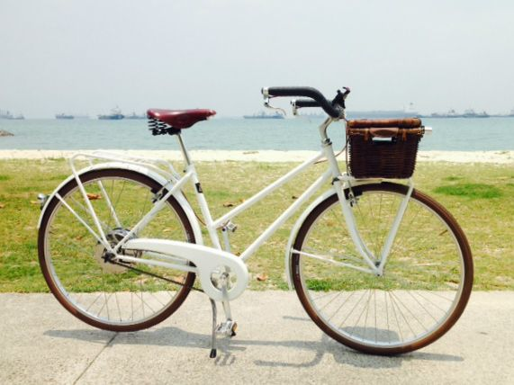 Thanks to Te-Shan, our customer who sent us the picture of his #ebike Voyager, taken on the coastal park running about 16 km along #Singapore's south eastern waterfront!  - Motor and battery all-in-one, the innovative technology by #Zehus  - Frame pure white - Rattan chest Basil on the front rack - Rear rack - Leather wrapped handlebar - Saddle Brooks  See the Voyager and the other VeloPlus ebikes with ZeHus technology in our store http://www.velorapida.com/e-bikes-veloplus.html