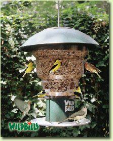 Anti Squirrel Bird Feeder a unique wild bird feeding station by Wild Bills from Natures Needs Inc