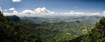 Springbrook National Park - Google Search