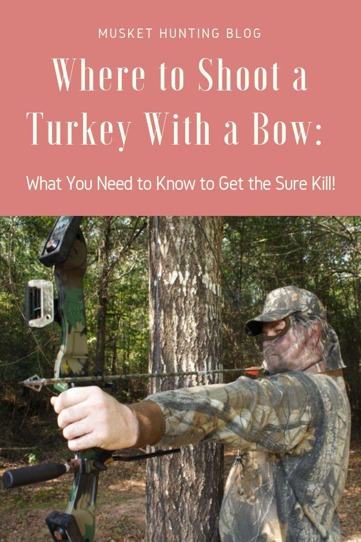 Park Art|My WordPress Blog_Where To Kill A Turkey With A Bow