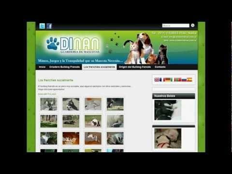 Video Demostración Página Web Gratis Autoadministrable - Plan Pyme 3.0    Diseño Web Gratis    http://www.supaginagratis.com.ar/plan-pyme-3-autoadministrable/