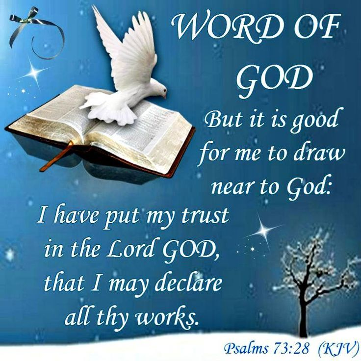 Word of God! Psalm 73.28