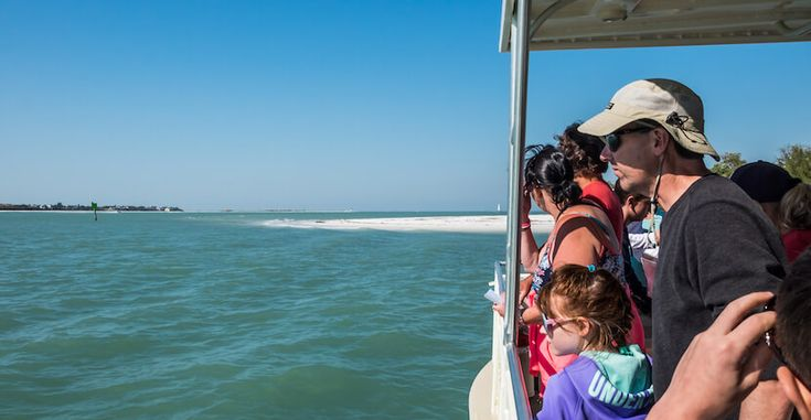 The Dolphin Explorer Marco Island, Florida. Families can enjoy a cruise on a 30-foot catamaran & watch bottlenose dolphins play in their natural habitat in the Gulf of Mexico. Photo by Mary Carol Fitzgerald. | Must Do Visitor Guides