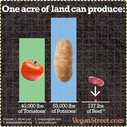 How much food can you get from an acre of land? The answers are kind of surprising. http://veganstreet.com/