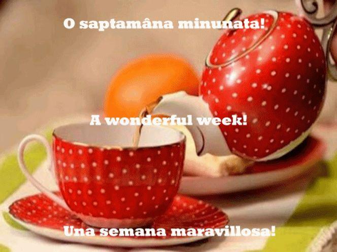 WEEK 2 — Postimage.org