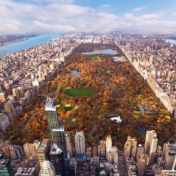 New York City Feelings - central park in autumn is right around the corner...