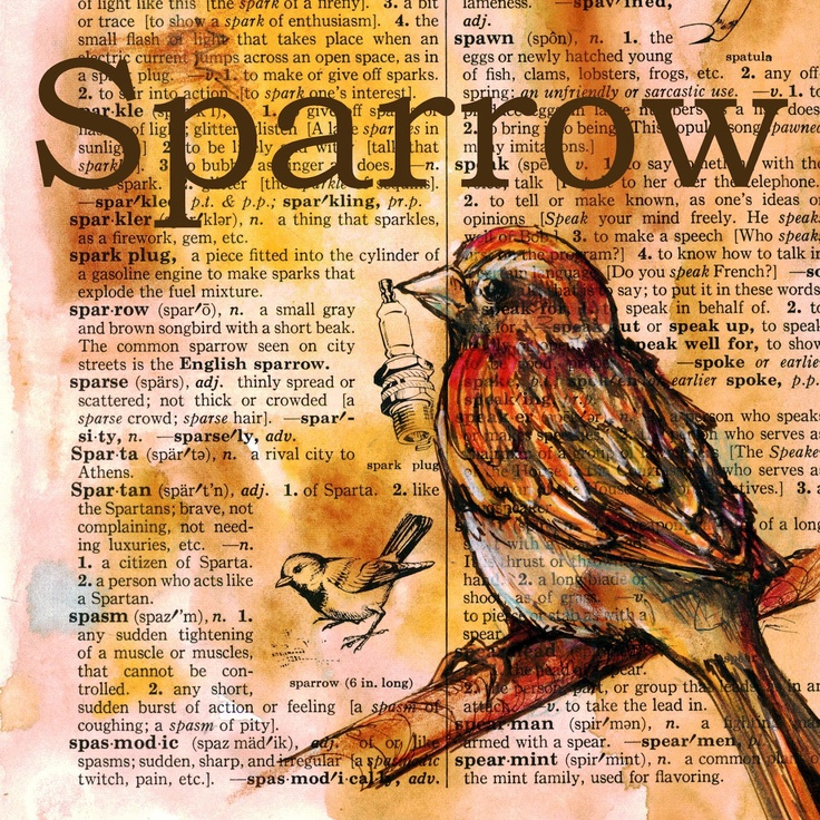 Sparrow mixed media drawing on distressed, dictionary page - flying shoes art studio