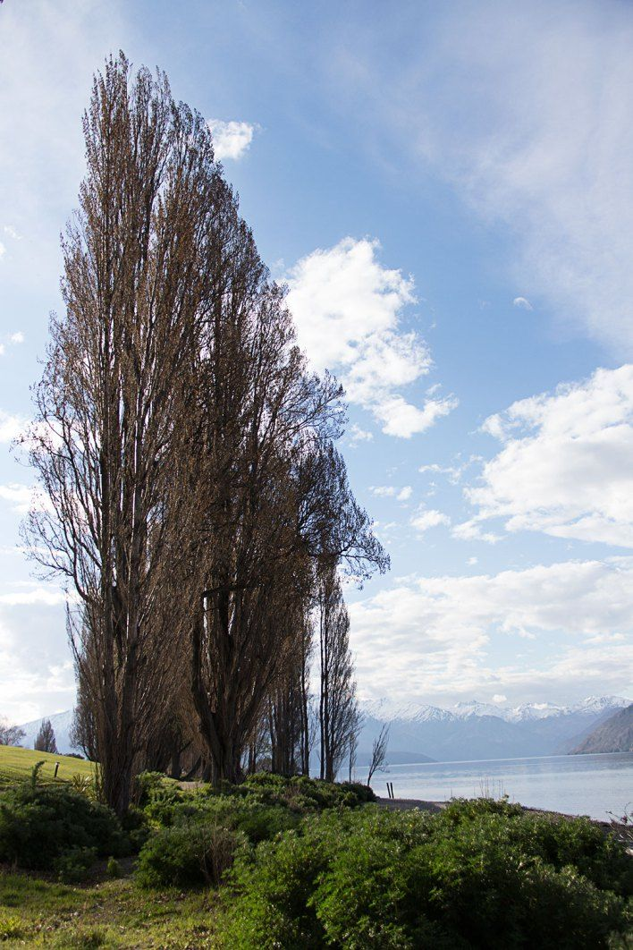 New Zealand Travel: A week in Wanaka. South Island travel tips.