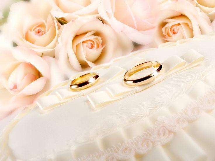 autre image - images de mariage, bagues fonds d'écran, vecteur de paillettes, photos de fleurs, or, rose milieux photos, matériel de tissu fond 1024x768 autre matériel