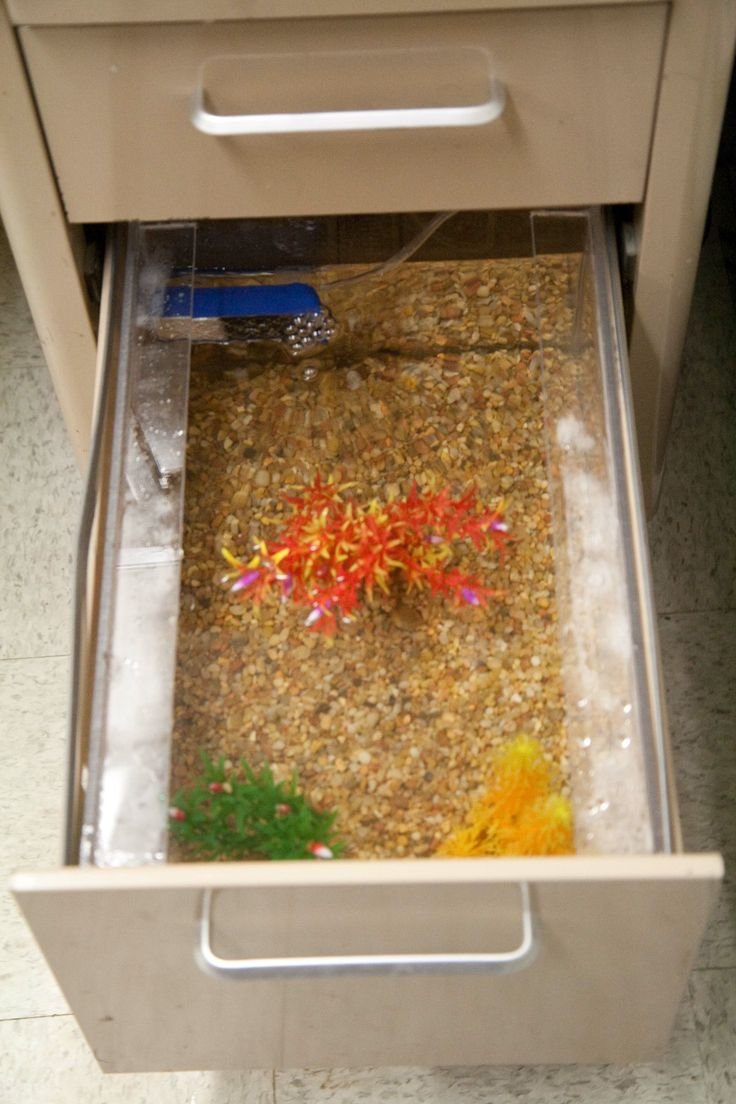 fish tank for office. filing cabinet converted to fish tank for office e