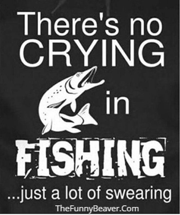 The 25 best fishing humor ideas on pinterest fishing for Funny fish sayings