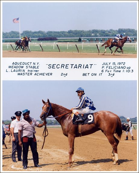 Secretariat - the greatest racehorse of all time