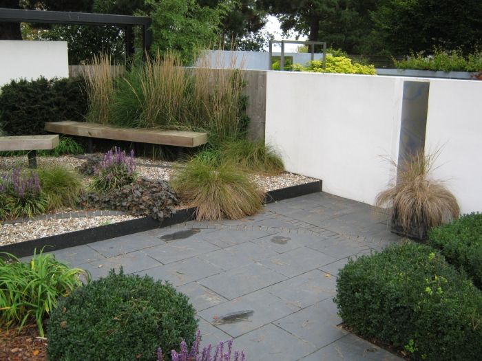 Typical modern garden plants bamboos ornamental grasses for Typical landscaping plants