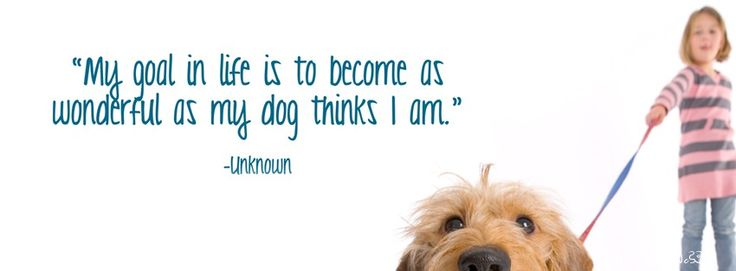 Facebook Cover Photos Dog Quotes Dog Quotes Facebook Covers