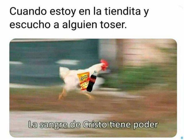 Limoncito Humor Memes Funny