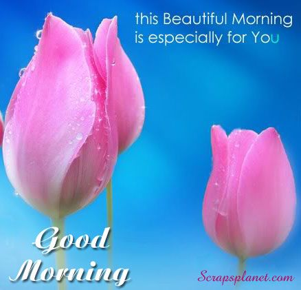 Good Morning scraps, Good Morning Greetings, images, quotes
