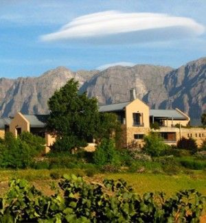 Tokara Winery - Red and white wine and olive producing farm located in the Helshoogte valley, South Africa.