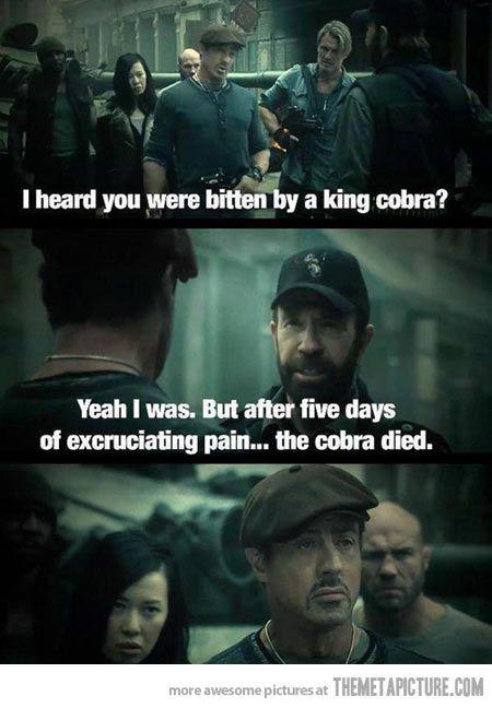 My favorite scene in the movie...Chuck Norris tells a Chuck Norris joke.