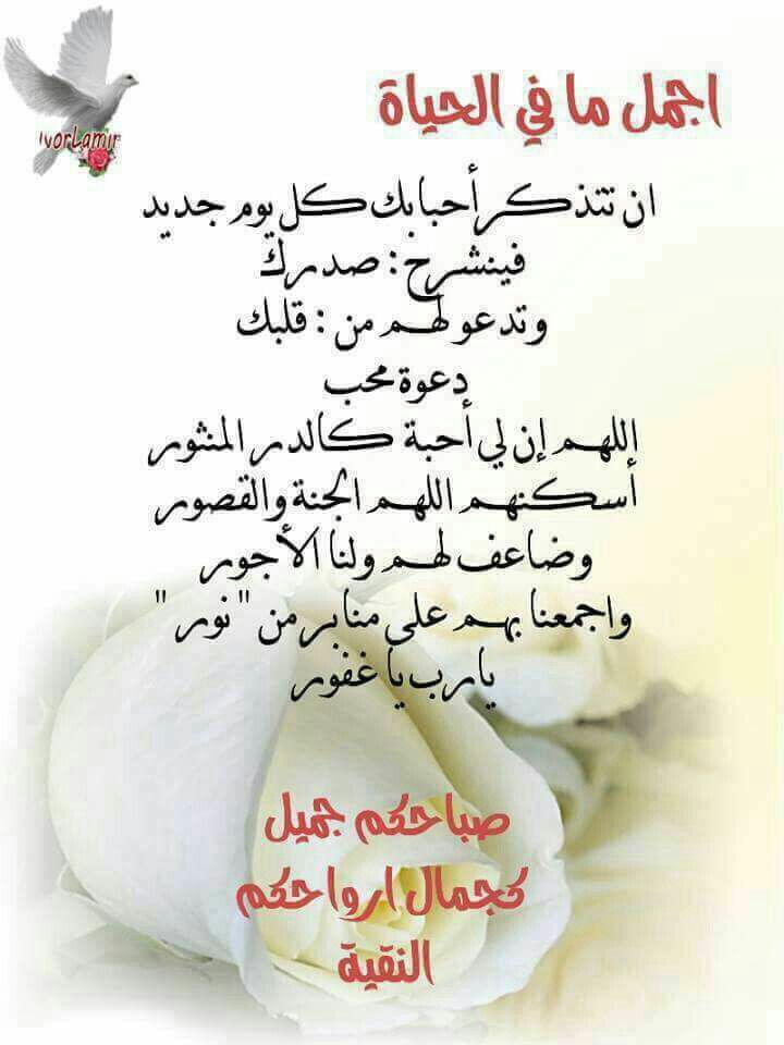 صباح الخير Good Morning Friends Quotes Beautiful Morning Messages Morning Texts