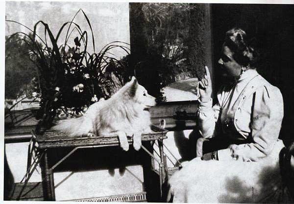 Княгиня Зинаида Николаевна Юсупова с любимым шпицем