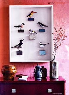 fantastic way to display abigail's phenomenal birdies: Birds Cages, Display Birds, Abigail Brown, Collection Display, Fabrics Birds, Display Abigail, Taxidermy Art, Birds Taxidermy, Art Rooms