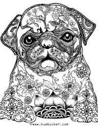 60 best coloring pugs images on Pinterest Doggies Coloring books