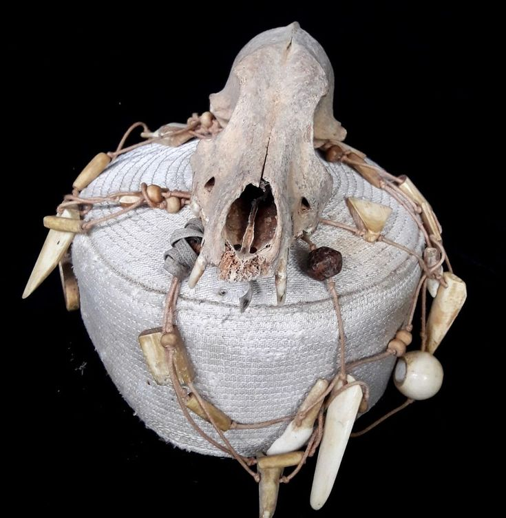 Skull Hat Headdress curio bizarre Tribal Asmat Headhunter tribal Art collectable #Tribal