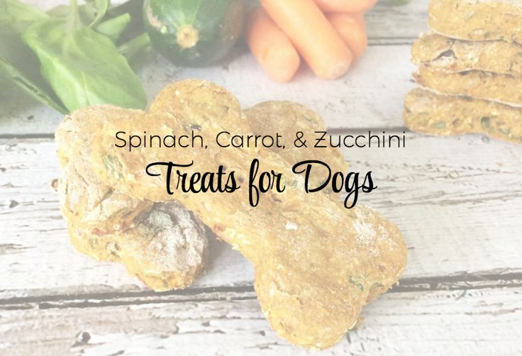 Are you looking for a healthy treat for your mutt? Try these spinach, carrot, and zucchini treats for dogs! Easy to make, and so wholesome and delicious!