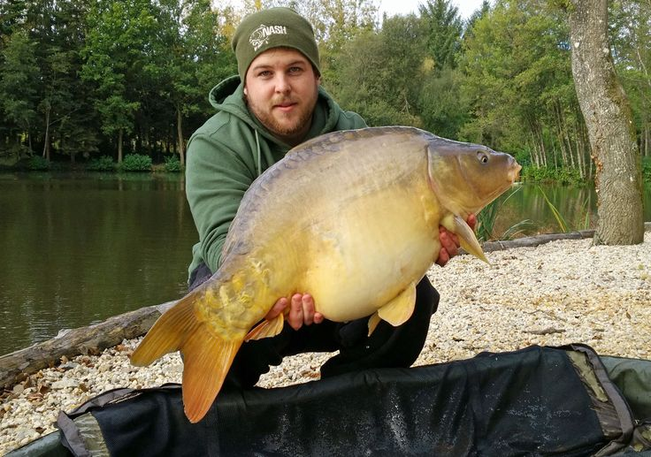 Another nicely framed mirror. #carpfishing www.frenchcarpandcats.com