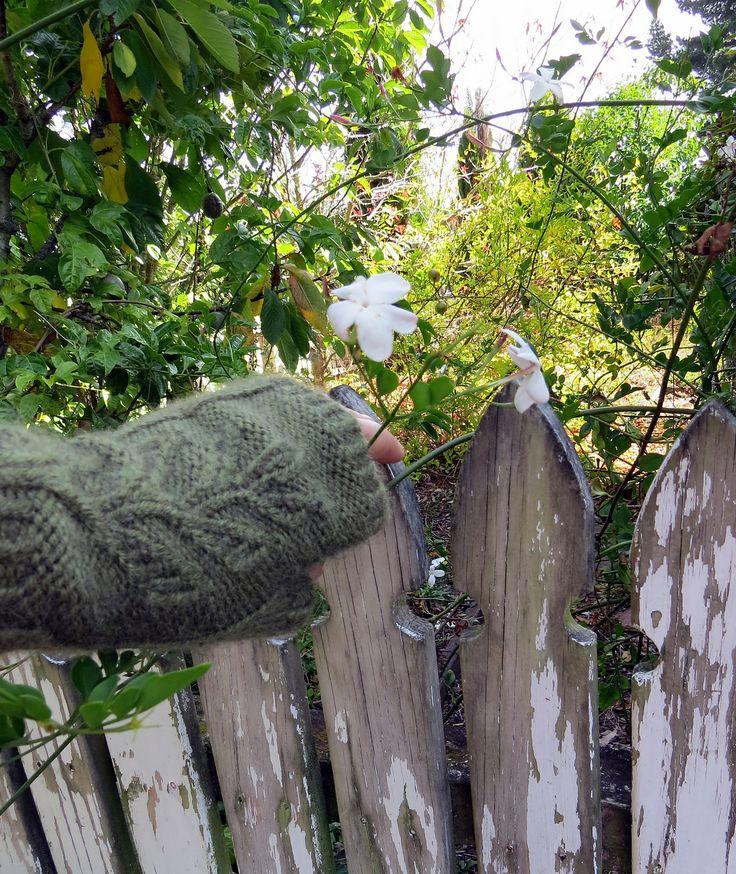 Ravelry: Abbeyhere's Verdure