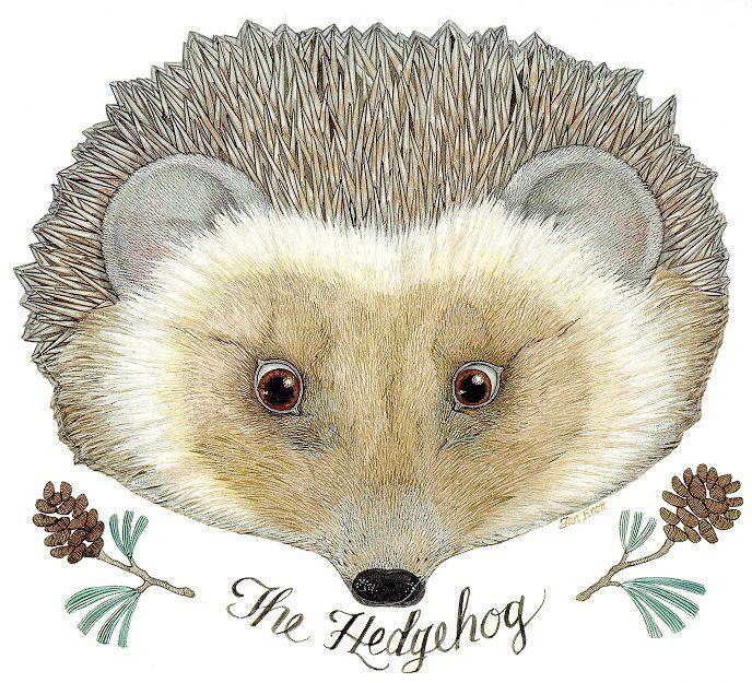 The Mitten By Jan Brett Rabbit the mitten - the badger art awareness ...