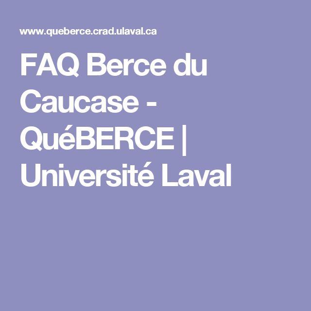 FAQ Berce du Caucase - QuéBERCE | Université Laval