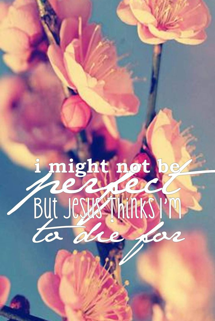 Bible verse I phone wallpapers :)