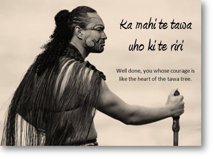 maori proverb about education - Google Search