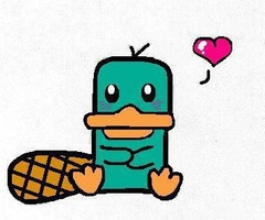 Perry the Platypus <3