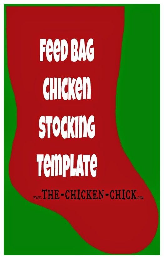 Time to start thinking about Christmas in the chicken coop...