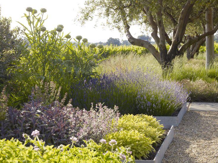42 Best Images About Landscape Architecture On Pinterest