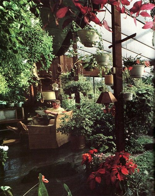 just keep on adding plants: Green Houses, Bohemian Interiors, Green Thumb, Secret Gardens, Living Rooms, Bohemian Living, Greenhouses, Reading Rooms, Indoor Plants