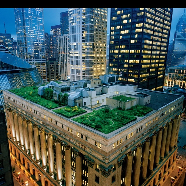 17 Best Images About Urban Garden Roof Top Vegetable Gardens On Pinterest Gardens Green